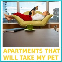02-Apartments_That_Will_Take_My_Pet