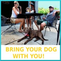 03-Bring_Your_Dog-box